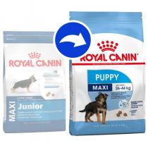 Crocchette per cani Royal canin maxi junior 15 Kg