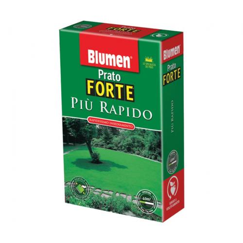 Semi prato Blumen prato forte più rapido 1 Kg