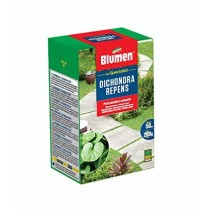 Blumen semi prato dichondra repens 200 g