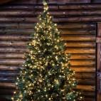 Luci di Natale Lotti 500 micro LED bianco caldo 37.5 m