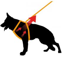 FERPLAST Ergocomfort Linear P - Pettorina regolabile per Cani in vari colori - 5 Taglie