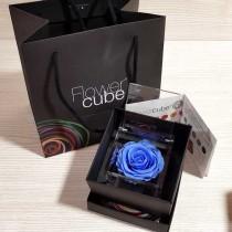 Rosa vera stabilizzata FlowerCube cubo 8x8 cm azzurro