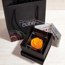 Rosa vera stabilizzata FlowerCube cubo 8x8 cm arancione