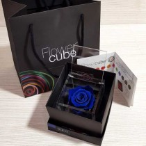 Rosa vera stabilizzata FlowerCube cubo 6x6 cm blu