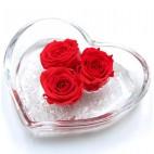 Cuore di rosa, 3 rose stabilizzate in cuore vetro 12x12 cm rosso