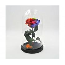 Rosa incantata stabilizzata Rainbow Flowercube con base in legno altezza 30 cm rainbow