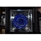 Rosa stabilizzata con glitter FlowerCube cubo 6x6 cm