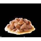 Royal Canin Hairball care in salsa 85 grammi cibo umido per gatti
