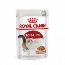 Cibo umido per gatti Royal Canin instinctive in salsa 85 g confezione 12 pz.