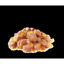 Royal Canin Intense beauty jelly 85 grammi confezione da 12 cibo umido per gatti