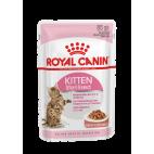 Royal Canin Sterilised in salsa 85 grammi confezione da 12 cibo umido per gatti