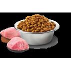 Crocchette per cani Farmina N&D grain free cinghiale, zucca e mela 2,5 kg adult medium/maxi