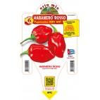 Pianta da orto peperoncino habanero rosso Orto Mio