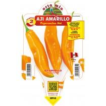 Pianta da orto peperoncino piccante hot  Aji Amarillo F1 Orto Mio vaso 14