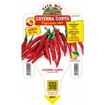 Pianta da orto peperoncino piccante hot  Cayenna corto F1 Orto Mio vaso 14
