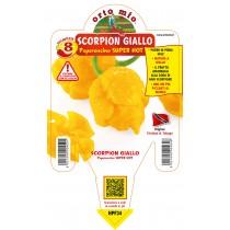 Pianta da orto peperoncino piccante super hot Scorpion giallo Orto Mio vaso 14