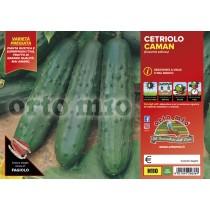 Pianta da orto cetriolo da mercato Caman F1 Orto Mio vaso 10