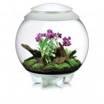 Terrario per piante Oase biOrb AIR 60 bianco