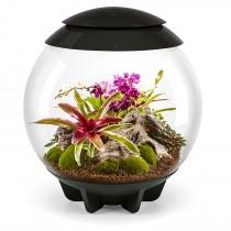Terrario per piante Oase biOrb AIR 60 nero