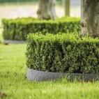 Bordura giardino recinto resistente Ecolat Enroulee 14 cm x 7 mm x 10 m