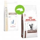 Crocchette per gatti Royal Canin veterinary diet gastro intestinal feline 2 Kg