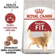 Crocchette per cani Royal Canin feline fit 32 400 g
