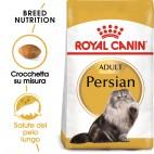 Crocchette per gatti Royal Canin persian adult 400 g