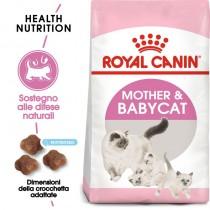 Crocchette per gatti Royal Canin feline mother and babycat gattini 2 Kg