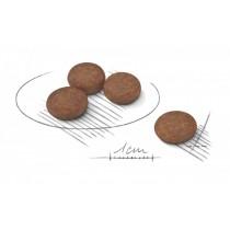 Crocchette per cani Royal Canin mini digestive care 1 Kg