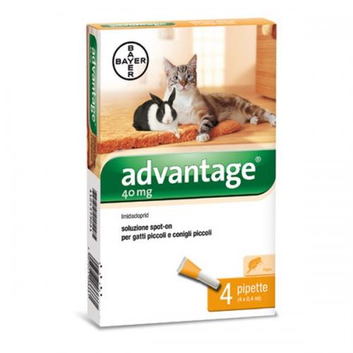 BAYER Advantage 40 Spot-on Gatti e conigli di peso inferiore a 4 kg