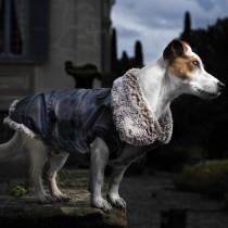 Cappottino per cani Croci giubbotto imbottito rochester