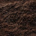 Terriccio per gerani Compo sana per piante da balcone e fioriere 80 L