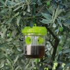 Trappola per vespe Verdemax 4529