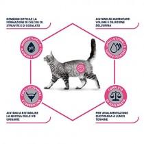 Crocchette per gatti Advance Urinary Veterinary diets 8 Kg