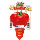 Pianta pomodoro V10 Orto Mio varietà Optima