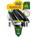 Pianta melanzana lunga nera innestata V14 Orto Mio varietà Nilo