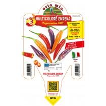 Pianta peperoncino multicolore lungo V14 Orto Mio varietà Eureka