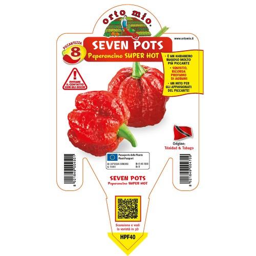 Pianta peperoncino Seven Pots V14 Orto Mio