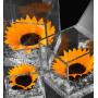 Flowercube Girasole stabilizzato cubo Ars Nova