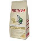Psittacus pappa alta proteina 1 Kg mangime da imbecco per amazzoni