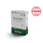 Semi prato Bottos royal golf 1 kg