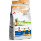Crocchette per cani Trainer fitness 3 adult medium maxi salmone, mais e olio 12,5 kg