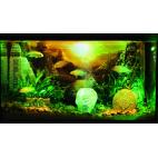 Hydor H2Show Lost Civilizations decorazione per acquario teschio finto