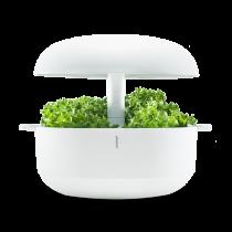 Giardino orto da appartamento idroponico Plantui 6 smart garden bianco