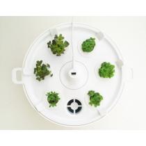 Plantui giardino orto da appartamento idroponico 6 smart garden