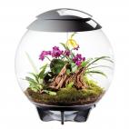 Terrario per piante Oase biOrb AIR 60 grigio