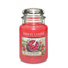 Yankee candle red raspberry giara grande